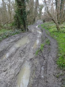 Serious mud on Hangers Way