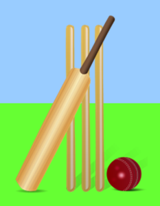 Cricket bat, ball and stumps